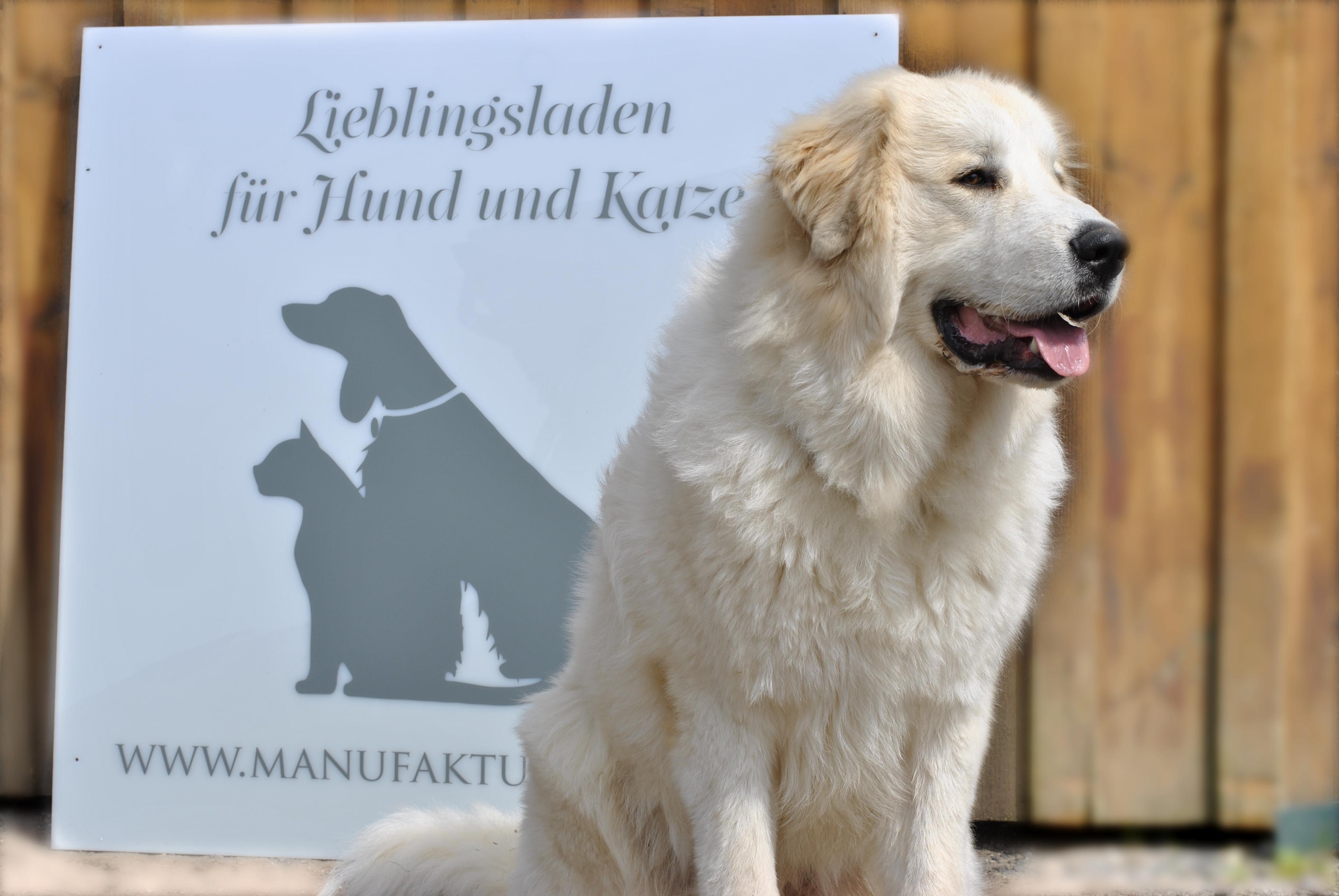 Shop für Hundezubehoer