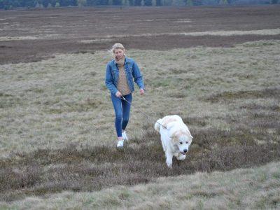 Hund in der Lüneburger Heide