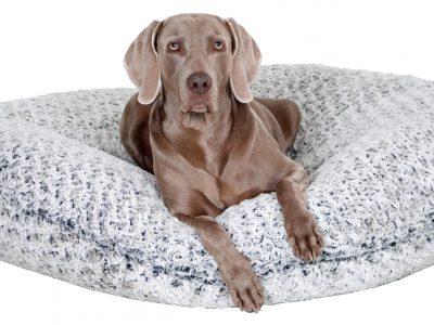 Kuschelzeit – Hunde lieben es jetzt flauschig und weich