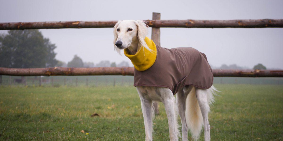 Gemütlich durch den Herbst – neue Hundemäntel