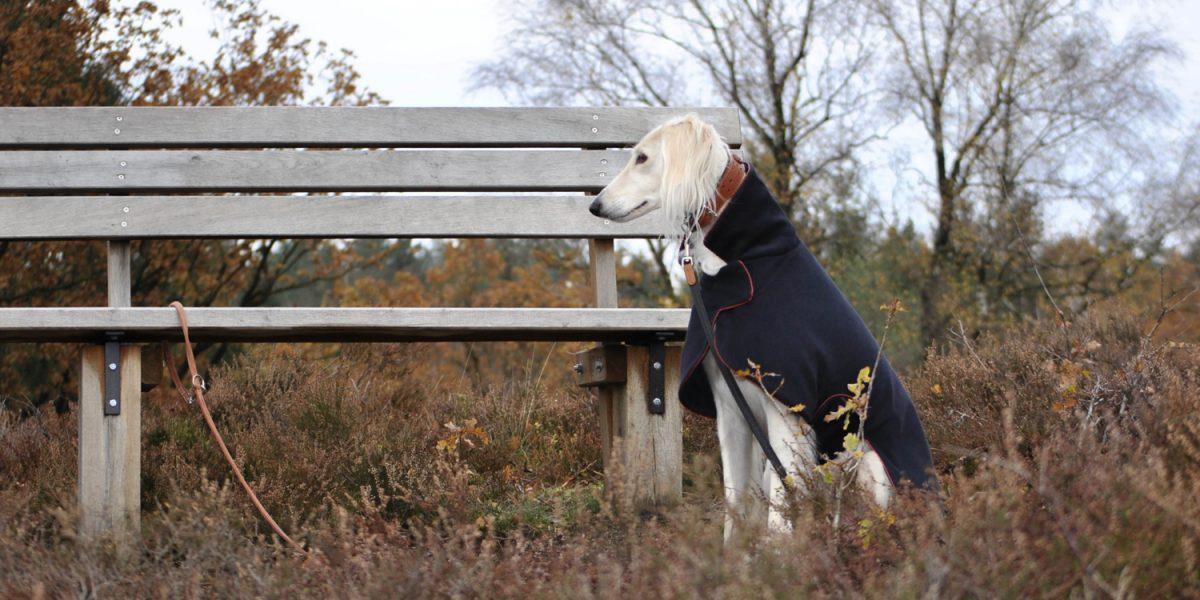 Hundemäntel die einfach passen und halten
